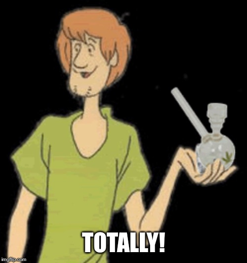 Shaggy bong | TOTALLY! | image tagged in shaggy bong | made w/ Imgflip meme maker