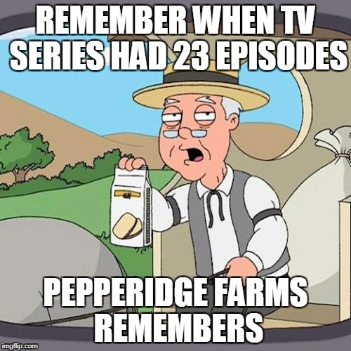 Why is Netflix doing series with only 6 or 9 episodes.  Might as well do a movie instead. | REMEMBER WHEN TV SERIES HAD 23 EPISODES PEPPERIDGE FARMS REMEMBERS | image tagged in memes,pepperidge farm remembers | made w/ Imgflip meme maker