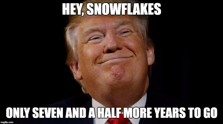 HEY, SNOWFLAKES ONLY SEVEN AND A HALF MORE YEARS TO GO | made w/ Imgflip meme maker