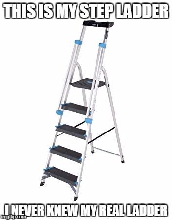 Step ladder | THIS IS MY STEP LADDER I NEVER KNEW MY REAL LADDER | image tagged in funny,puns,dad joke | made w/ Imgflip meme maker