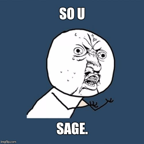 Y U No Meme | SO U SAGE. | image tagged in memes,y u no | made w/ Imgflip meme maker