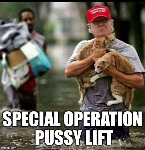 Kitty lift | SPECIAL OPERATION PUSSY LIFT | image tagged in trump cat flood rescue | made w/ Imgflip meme maker