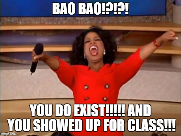 Oprah You Get A Meme | BAO BAO!?!?! YOU DO EXIST!!!!! AND YOU SHOWED UP FOR CLASS!!! | image tagged in memes,oprah you get a | made w/ Imgflip meme maker