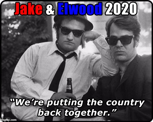 We're on a mission from God | image tagged in election 2020,vote,blues brothers | made w/ Imgflip meme maker