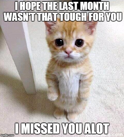 Cute Cat Meme | I HOPE THE LAST MONTH WASN'T THAT TOUGH FOR YOU I MISSED YOU ALOT | image tagged in memes,cute cat | made w/ Imgflip meme maker