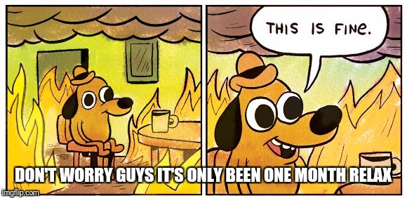 This Is Fine |  DON'T WORRY GUYS IT'S ONLY BEEN ONE MONTH RELAX | image tagged in this is fine dog | made w/ Imgflip meme maker