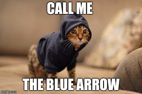 Hoody Cat | CALL ME THE BLUE ARROW | image tagged in memes,hoody cat | made w/ Imgflip meme maker