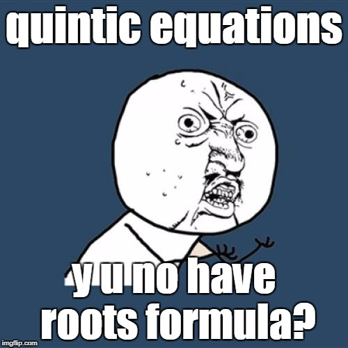 Y U No Meme | quintic equations y u no have roots formula? | image tagged in memes,y u no | made w/ Imgflip meme maker