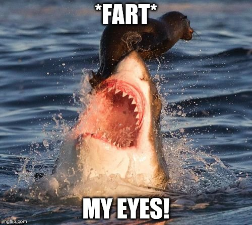 Travelonshark Meme | *FART* MY EYES! | image tagged in memes,travelonshark | made w/ Imgflip meme maker