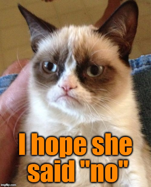 "Grumpy Cat Meme | I hope she said ""no"" 