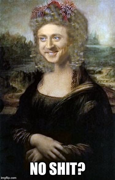 Monalisa | NO SHIT? | image tagged in monalisa | made w/ Imgflip meme maker