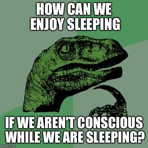 Philosoraptor Meme | HOW CAN WE ENJOY SLEEPING IF WE AREN'T CONSCIOUS WHILE WE ARE SLEEPING? | image tagged in memes,philosoraptor | made w/ Imgflip meme maker