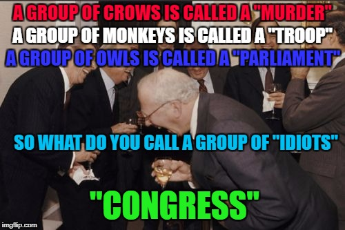 "Who elects these people anyways? | A GROUP OF CROWS IS CALLED A ""MURDER"" A GROUP OF MONKEYS IS CALLED A ""TROOP"" A GROUP OF OWLS IS CALLED A ""PARLIAMENT"" SO WHAT DO YOU CALL A  