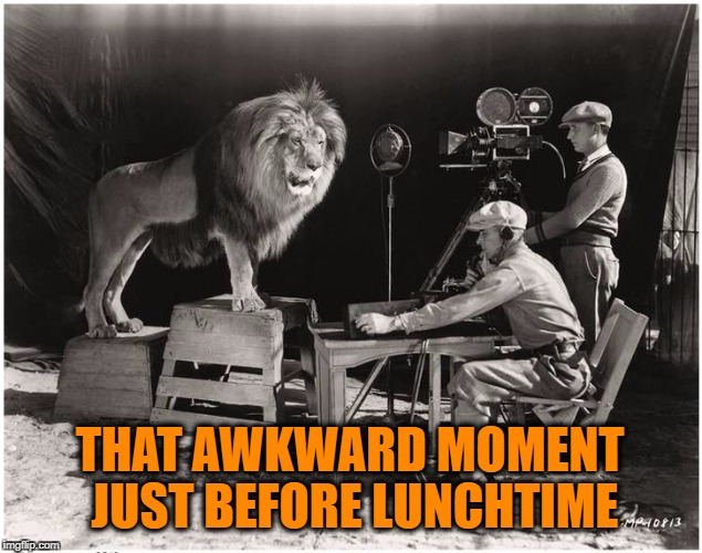 THAT AWKWARD MOMENT JUST BEFORE LUNCHTIME | image tagged in mgm lion,cecil the lion,lunch time,lunch,october,halloween | made w/ Imgflip meme maker