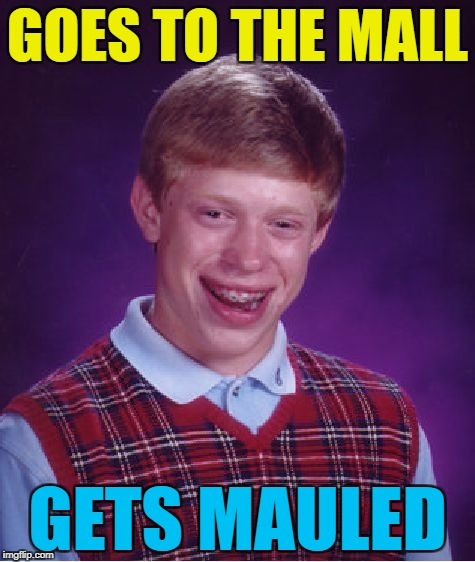 It could only happen to him... :) | GOES TO THE MALL GETS MAULED | image tagged in memes,bad luck brian,shopping,mauled,mall | made w/ Imgflip meme maker