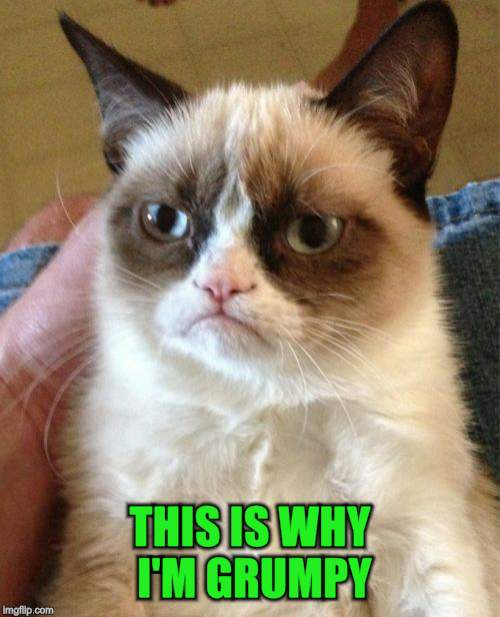 Grumpy Cat Meme | THIS IS WHY I'M GRUMPY | image tagged in memes,grumpy cat | made w/ Imgflip meme maker