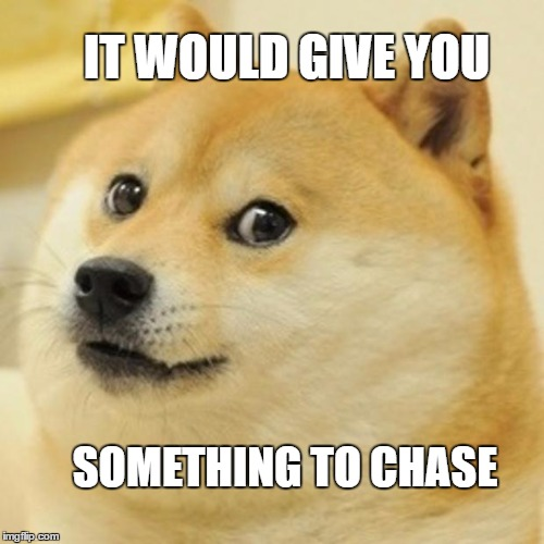 Doge Meme | IT WOULD GIVE YOU SOMETHING TO CHASE | image tagged in memes,doge | made w/ Imgflip meme maker