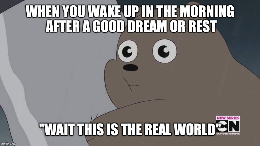 "Does any one else feel this way? | WHEN YOU WAKE UP IN THE MORNING AFTER A GOOD DREAM OR REST ""WAIT THIS IS THE REAL WORLD"" 