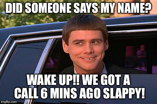 cool and stupid | DID SOMEONE SAYS MY NAME? WAKE UP!! WE GOT A CALL 6 MINS AGO SLAPPY! | image tagged in cool and stupid | made w/ Imgflip meme maker