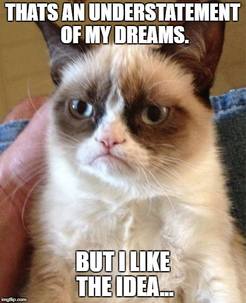 Grumpy Cat Meme | THATS AN UNDERSTATEMENT OF MY DREAMS. BUT I LIKE THE IDEA... | image tagged in memes,grumpy cat | made w/ Imgflip meme maker