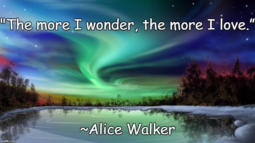 "Northern Lights | ""The more I wonder, the more I love."" ~Alice Walker 