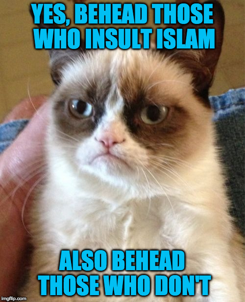 Grumpy Cat Meme | YES, BEHEAD THOSE WHO INSULT ISLAM ALSO BEHEAD THOSE WHO DON'T | image tagged in memes,grumpy cat | made w/ Imgflip meme maker