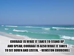 Navarre Beach  | COURAGE IS WHAT IT TAKES TO STAND UP AND SPEAK; COURAGE IS ALSO WHAT IT TAKES TO SIT DOWN AND LISTEN.  ~WINSTON CHURCHILL | image tagged in navarre beach | made w/ Imgflip meme maker