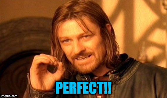 One Does Not Simply Meme | PERFECT!! | image tagged in memes,one does not simply | made w/ Imgflip meme maker