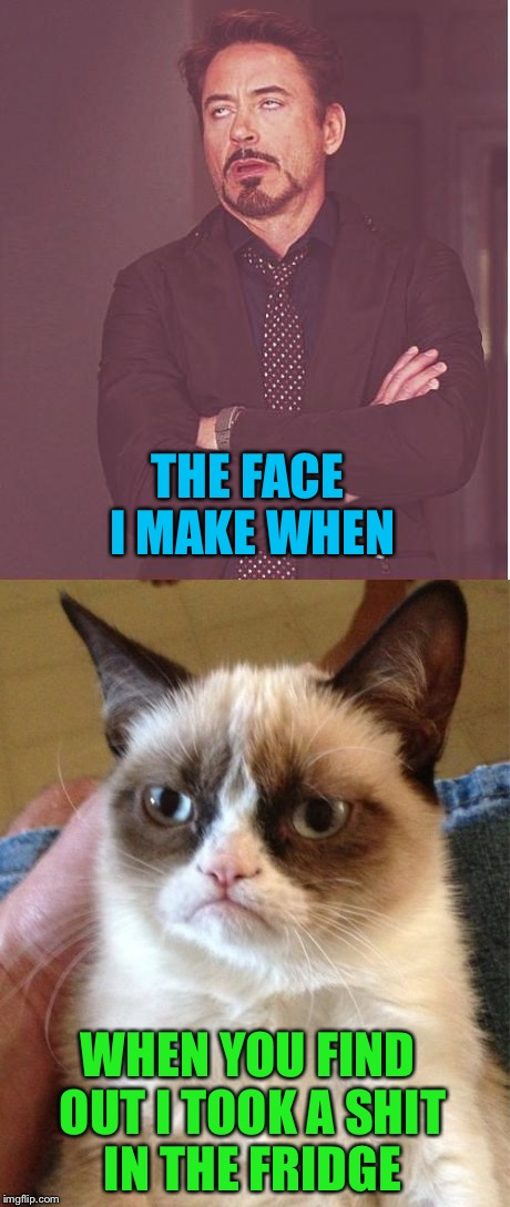 Meme wars  | THE FACE I MAKE WHEN WHEN YOU FIND OUT I TOOK A SHIT IN THE FRIDGE | image tagged in grumpy cat,the face you make | made w/ Imgflip meme maker