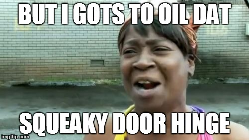 Aint Nobody Got Time For That Meme | BUT I GOTS TO OIL DAT SQUEAKY DOOR HINGE | image tagged in memes,aint nobody got time for that | made w/ Imgflip meme maker