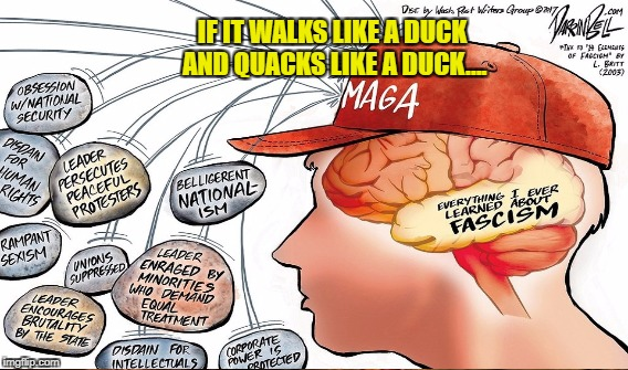 It's Happening in America | IF IT WALKS LIKE A DUCK AND QUACKS LIKE A DUCK.... | image tagged in facism,trump | made w/ Imgflip meme maker