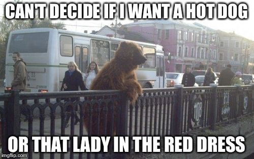City Bear Meme | CAN'T DECIDE IF I WANT A HOT DOG OR THAT LADY IN THE RED DRESS | image tagged in memes,city bear | made w/ Imgflip meme maker