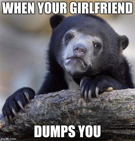 Confession Bear Meme | WHEN YOUR GIRLFRIEND DUMPS YOU | image tagged in memes,confession bear | made w/ Imgflip meme maker