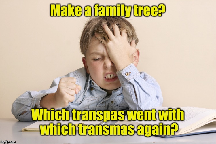 The challenge of transgender family trees | . | image tagged in memes,transgender,family tree,homework | made w/ Imgflip meme maker