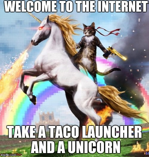 Welcome To The Internets Meme | WELCOME TO THE INTERNET TAKE A TACO LAUNCHER AND A UNICORN | image tagged in memes,welcome to the internets,scumbag | made w/ Imgflip meme maker