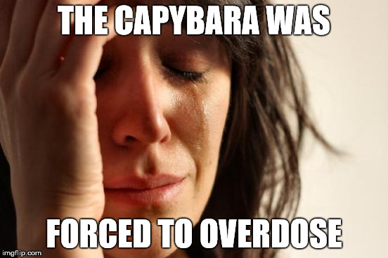 First World Problems Meme | THE CAPYBARA WAS FORCED TO OVERDOSE | image tagged in memes,first world problems | made w/ Imgflip meme maker
