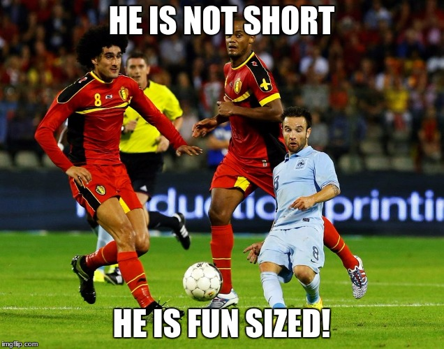 HE IS NOT SHORT HE IS FUN SIZED! | image tagged in short people problems | made w/ Imgflip meme maker