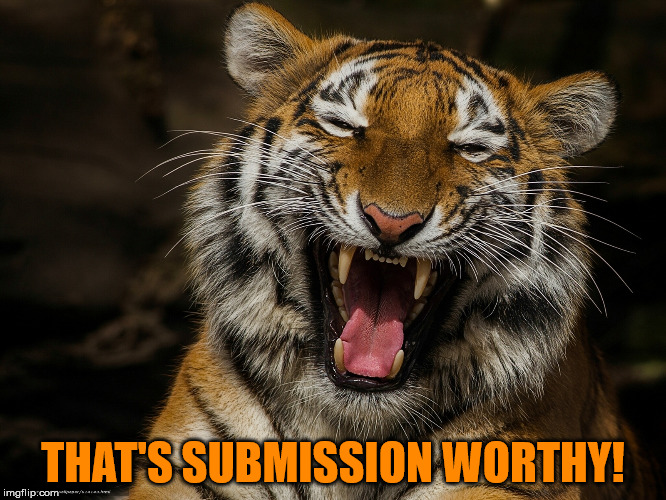 THAT'S SUBMISSION WORTHY! | made w/ Imgflip meme maker