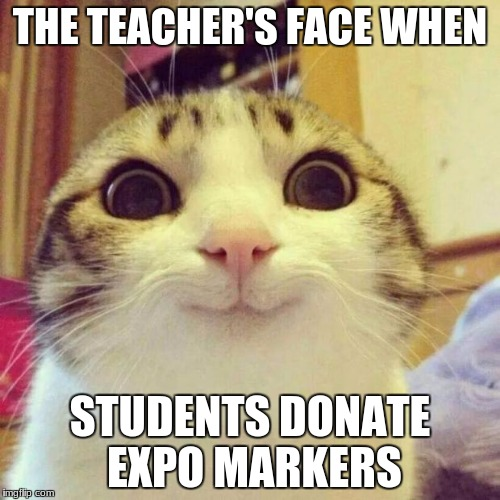 Smiling Cat Meme | THE TEACHER'S FACE WHEN STUDENTS DONATE EXPO MARKERS | image tagged in memes,smiling cat | made w/ Imgflip meme maker