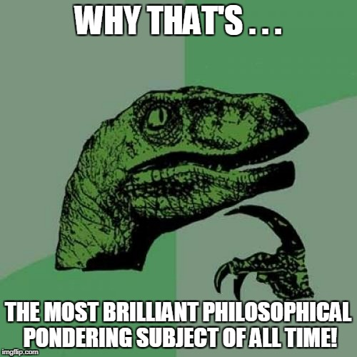 Philosoraptor Meme | WHY THAT'S . . . THE MOST BRILLIANT PHILOSOPHICAL PONDERING SUBJECT OF ALL TIME! | image tagged in memes,philosoraptor | made w/ Imgflip meme maker