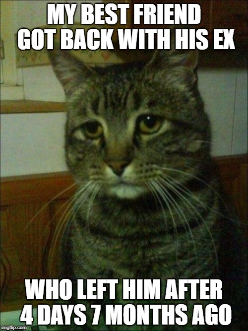 He said so many nasty things about her after he got over it and now he just takes her back like nothing ever happened... | MY BEST FRIEND GOT BACK WITH HIS EX WHO LEFT HIM AFTER 4 DAYS 7 MONTHS AGO | image tagged in memes,depressed cat | made w/ Imgflip meme maker