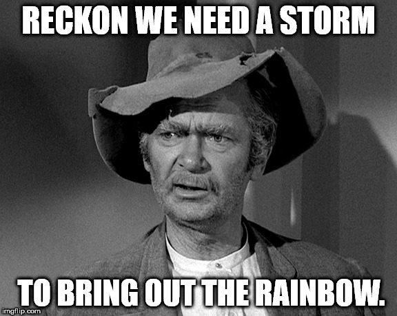 Jed Clampett | RECKON WE NEED A STORM TO BRING OUT THE RAINBOW. | image tagged in jed clampett | made w/ Imgflip meme maker