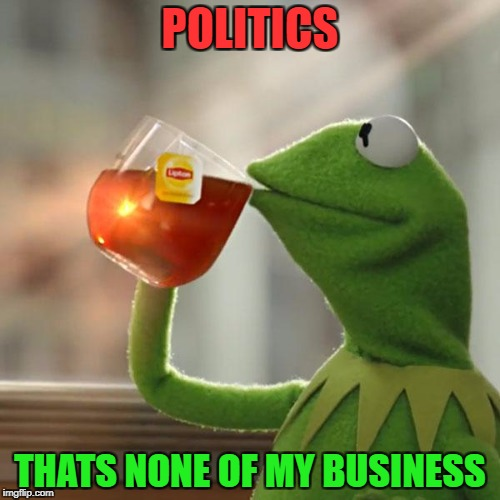 But Thats None Of My Business Meme | POLITICS THATS NONE OF MY BUSINESS | image tagged in memes,but thats none of my business,kermit the frog | made w/ Imgflip meme maker