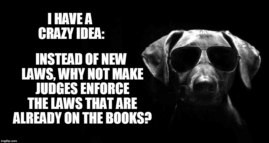 I HAVE A CRAZY IDEA: INSTEAD OF NEW LAWS, WHY NOT MAKE JUDGES ENFORCE THE LAWS THAT ARE ALREADY ON THE BOOKS? | made w/ Imgflip meme maker