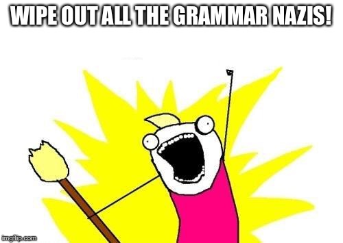 X All The Y Meme | WIPE OUT ALL THE GRAMMAR NAZIS! | image tagged in memes,x all the y | made w/ Imgflip meme maker