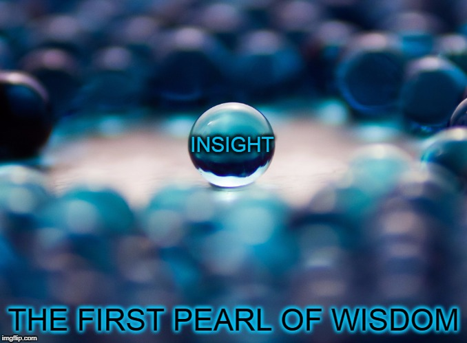 Pearls Before Thine | INSIGHT THE FIRST PEARL OF WISDOM | image tagged in vince vance,the first pearl,insight,wisdom,words of wisdom,blue pearls | made w/ Imgflip meme maker