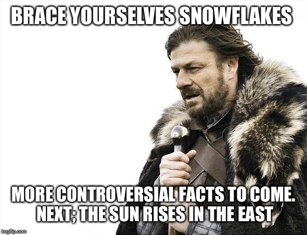 Brace Yourselves X is Coming Meme | BRACE YOURSELVES SNOWFLAKES MORE CONTROVERSIAL FACTS TO COME. NEXT; THE SUN RISES IN THE EAST | image tagged in memes,brace yourselves x is coming | made w/ Imgflip meme maker