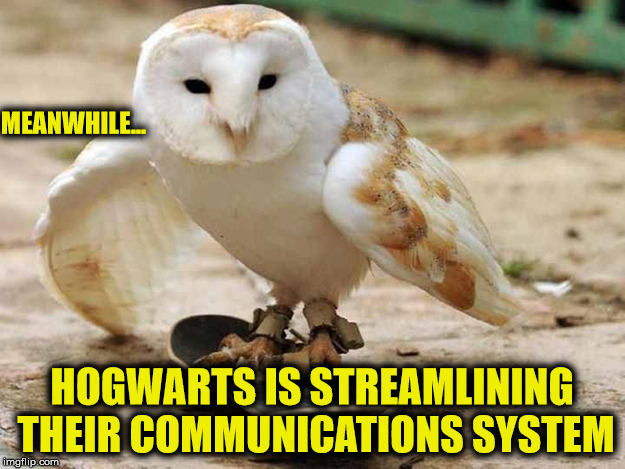 Why just send an owl with the acceptance letter when you can send a skateboarding owl with the acceptance letter  | MEANWHILE... HOGWARTS IS STREAMLINING THEIR COMMUNICATIONS SYSTEM | image tagged in hogwarts,owls,skateboards,acceptance letter,harry potter | made w/ Imgflip meme maker