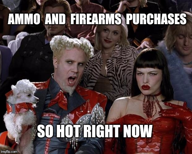 After every mass shooting. |  AMMO  AND  FIREARMS  PURCHASES; SO HOT RIGHT NOW | image tagged in memes,mugatu so hot right now,ammo,guns,firearms | made w/ Imgflip meme maker