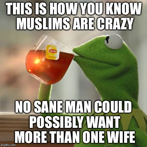 But Thats None Of My Business Meme | THIS IS HOW YOU KNOW MUSLIMS ARE CRAZY NO SANE MAN COULD POSSIBLY WANT MORE THAN ONE WIFE | image tagged in memes,but thats none of my business,kermit the frog | made w/ Imgflip meme maker